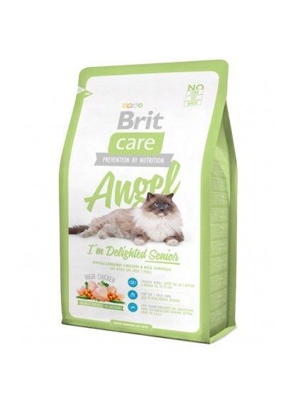 Brit Care Cat – Angel | Gatti Senior