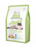 Brit Care Gatto – Angel | Gatti Senior